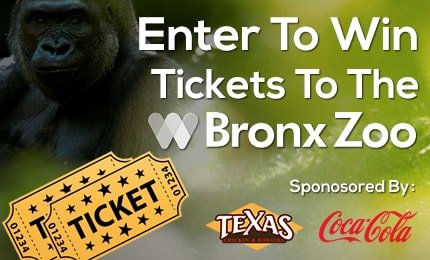 Win Free Bronx Zoo Tickets